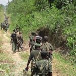 Beni: ADF fighters surprised by the FaRDC in the Semuliki valley